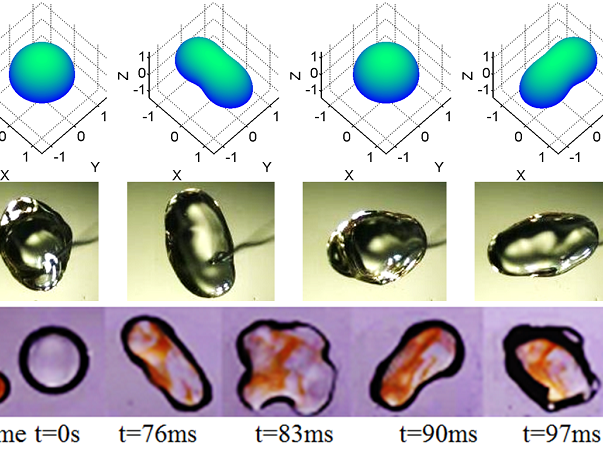 Interfacial Dynamics and Emergent Behaviour